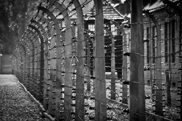 Barbed wire preventing any escape at Auschwitz I © avisionn.com