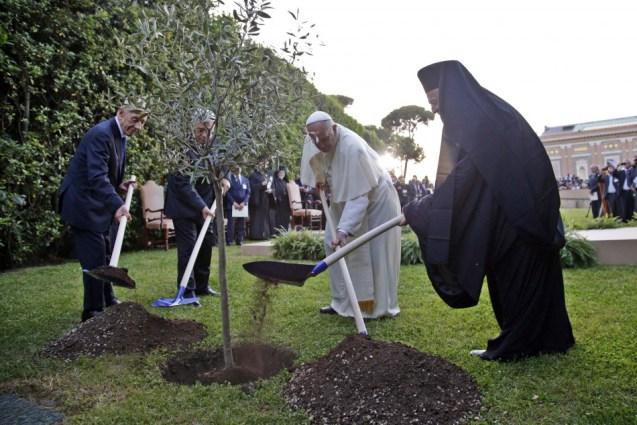 Shimon Peres e Mahmoud Abbas (à esquerda), o Papa Francisco (ao centro) e o Patriarca Bartolomeu I (à direita) quando plantavam uma oliveira pela paz nos jardins do Vaticano, em 8 de Junho de 2014. © International Business Times