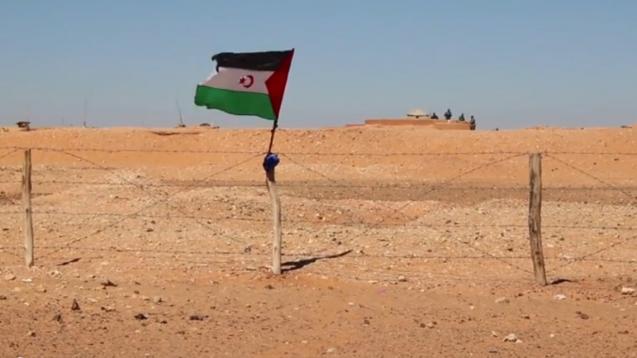 """o Reino de Marrocos também construiu, no Sara Ocidental, """"uma das mais longas barreiras fronteiriças"""" – cerca de 2700 quilómetros de comprimento e mais de 30 metros de altura. Não se trata de um só muro mas de seis blocos com areia e pedra, arame farpado, bunkers e minas terrestres ©emovethewall.org/"""
